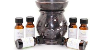 Essential Aspects You can not Forget When Acquiring An Essential Oil Diffuser