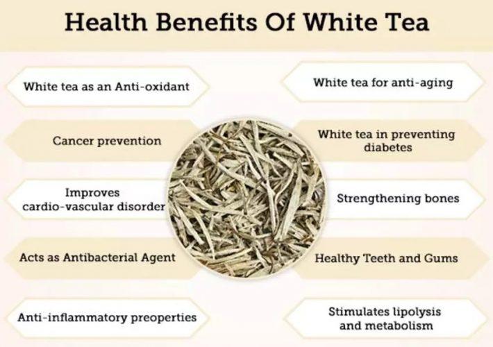 Health Benefits of White Tea
