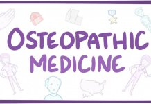 What's Osteopathic Medicine, and just how might it relate to Us?