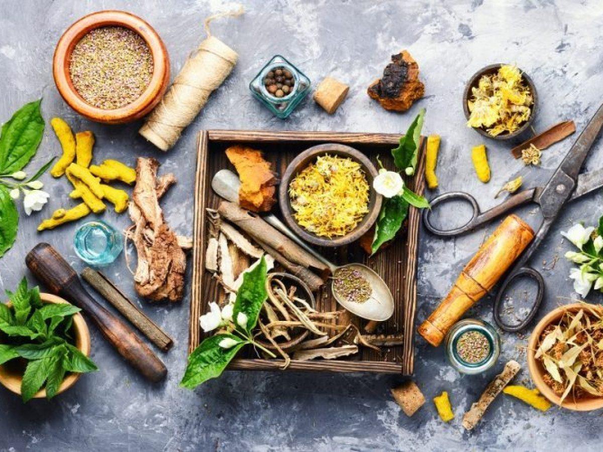 The History of Herbal Medicine | BIOPHYTOPHARM
