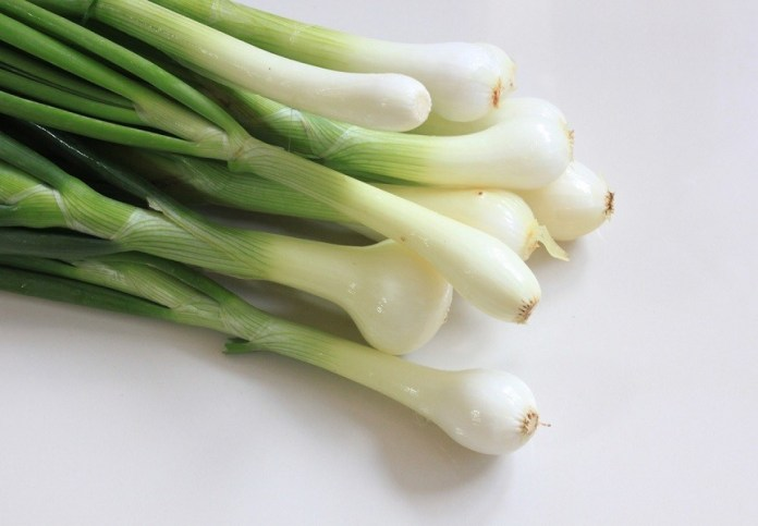Top Benefits of Green Onions