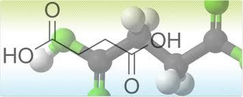 Bio-Succinic Acid