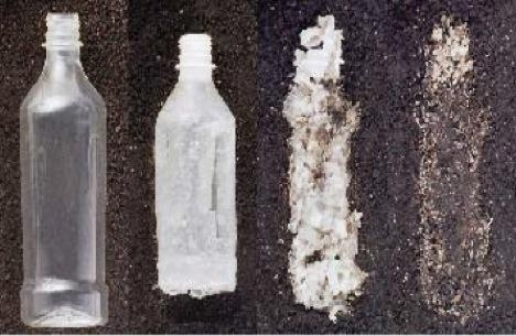 biodegradable plastic