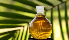 bioplastic biobased polyols