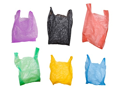 Row Blows up over Disposal of Bioplastic Bags in West Sussex