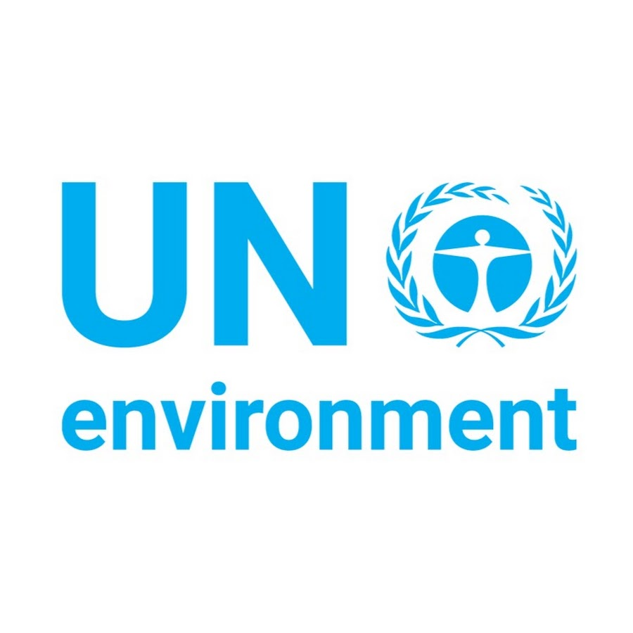 un report plastic alternatives and pollution