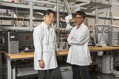 paper biodegradable biobatteries