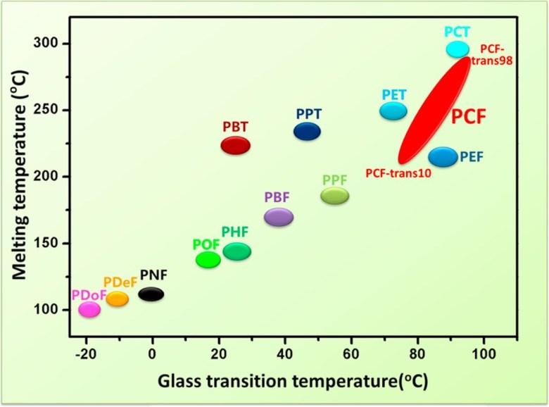 pcf disrupt pet bioplastics