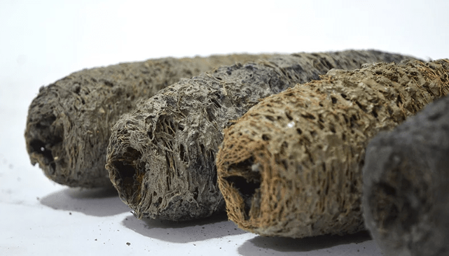 biodegradable bricks coal