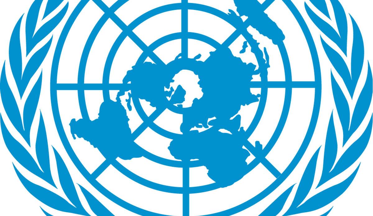 united nations consumer survey