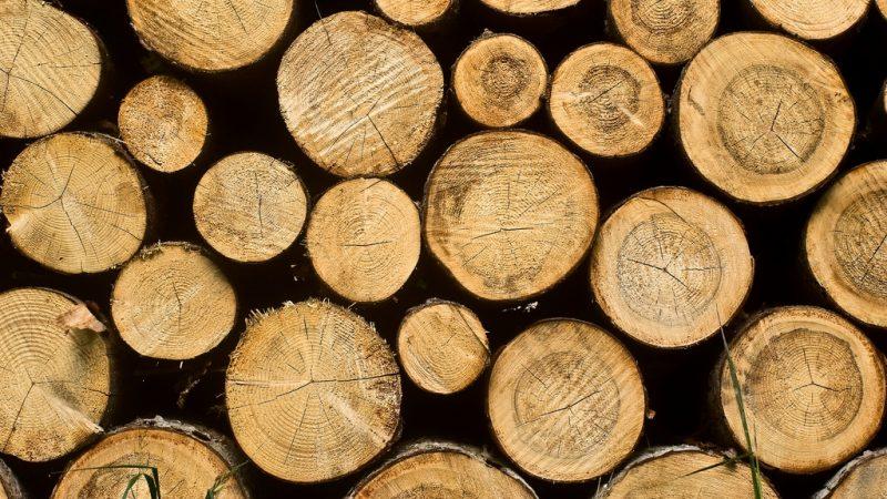 biomass fractioning