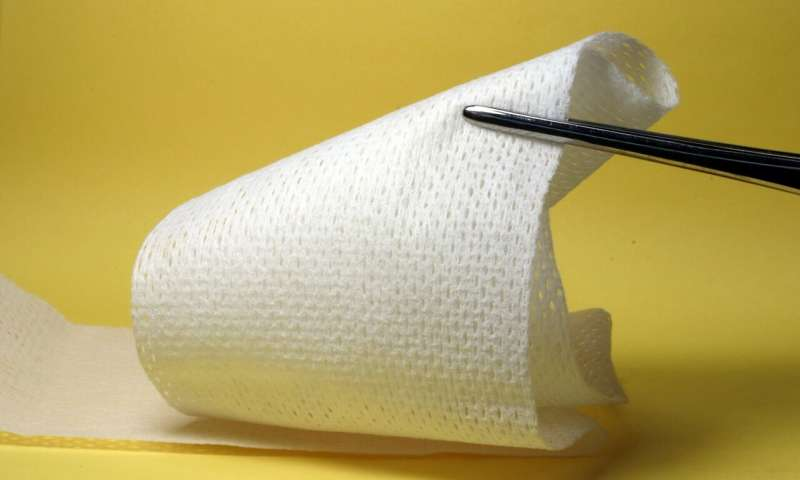 biodegradable wound dressing