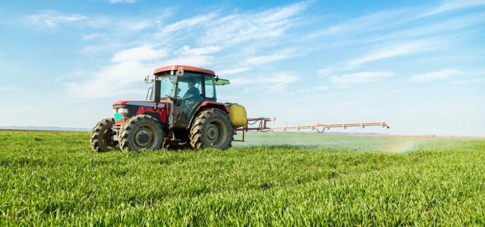 Biodegradable Foam Curb Weeds Post-Glyphosate