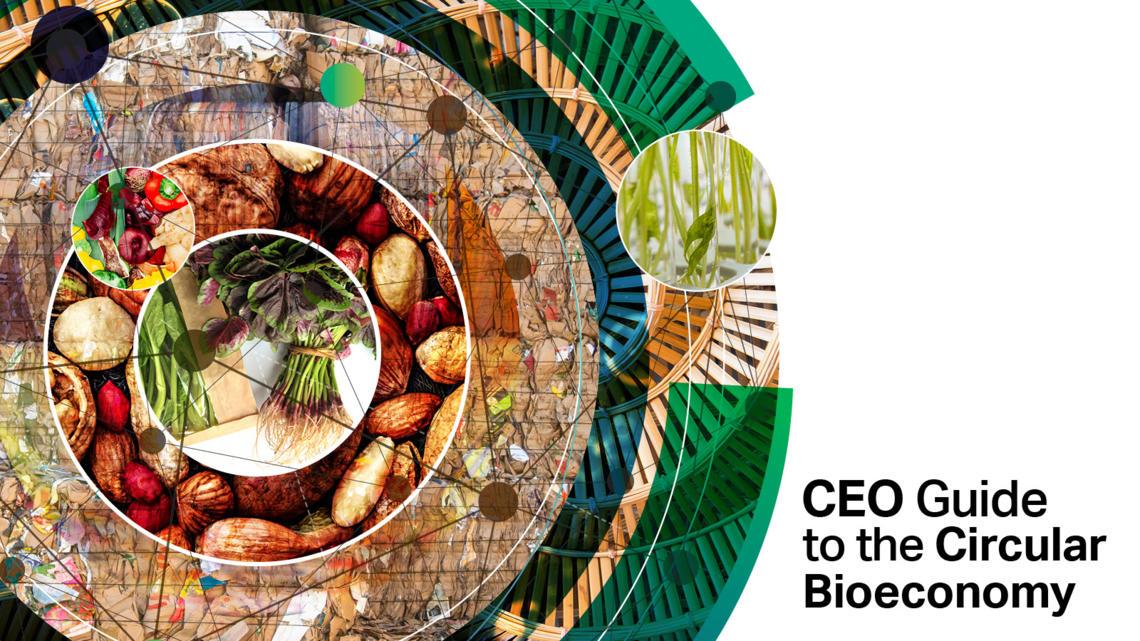 CEO Guide To Circular Bioeconomy