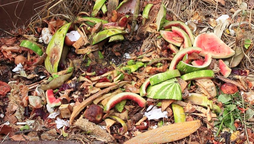 organic waste bioplastics