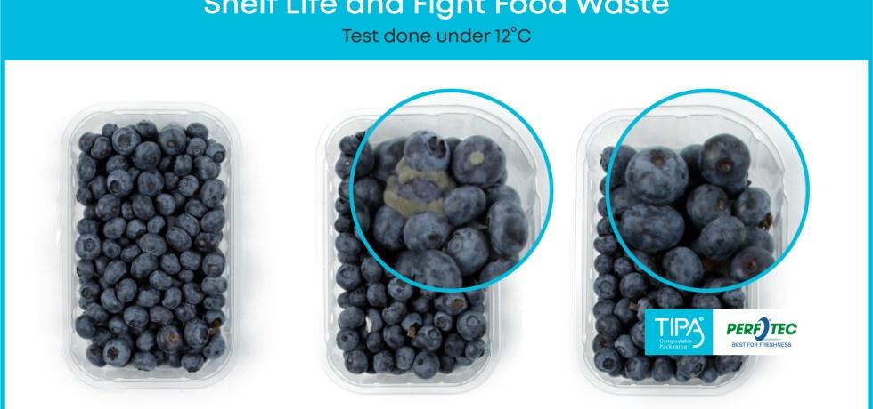 TIPA-Perfotec-Blueberries