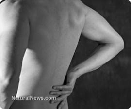 болки-гръб