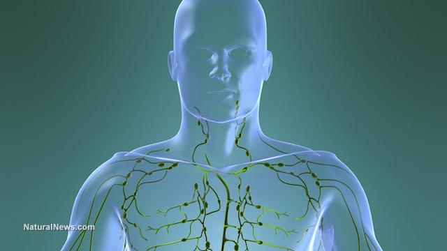 Вашите лимфни възли ви казват колко болни сте всъщност