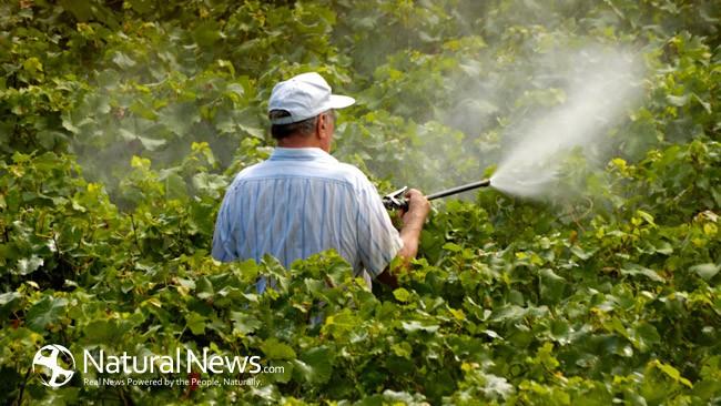 2 прости трика за премахване на пестициди от плодове и зеленчуци