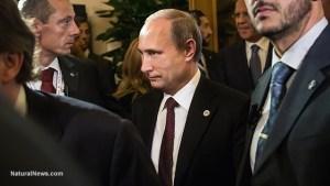 Владимир–Путин