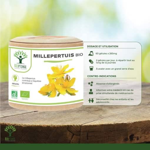 Utilisation Millepertuis bio