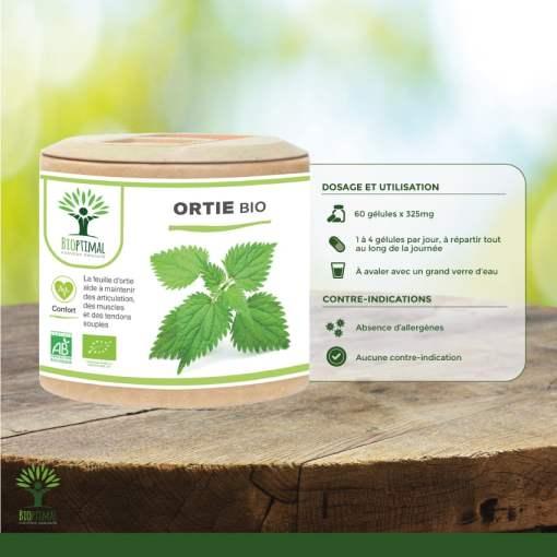 Utilisation Ortie Bio