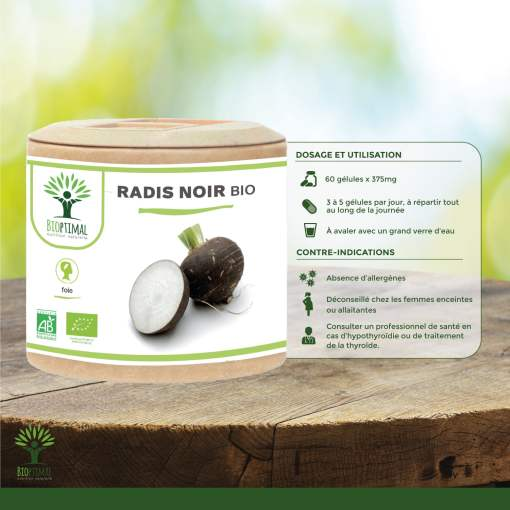 Utilisation radis noir bio