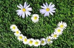 Plantes dépoluantes dossier thématiques
