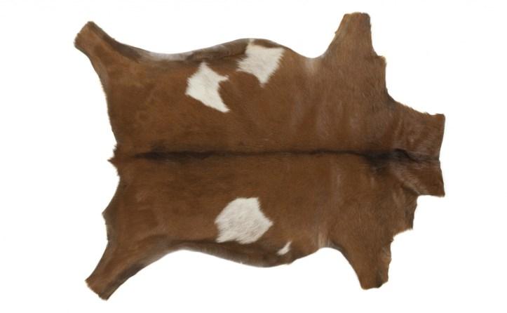 1.358 Retirer une tache de boue sur des poils ou de la peau de chèvre ou de mouton