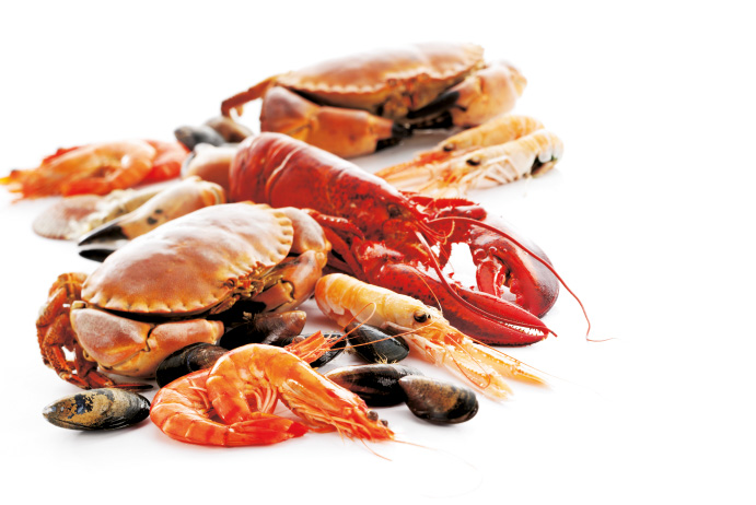 Documents utiles conservation des aliments fruit de mer