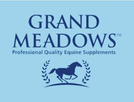 grandmeadows-logo-18