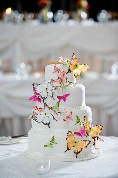 Butterfly Wedding Cake Woes Butterfly suggestions  Alternative cake suggestions