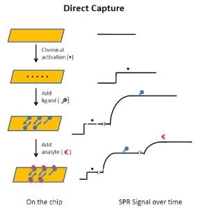 direct capture 1