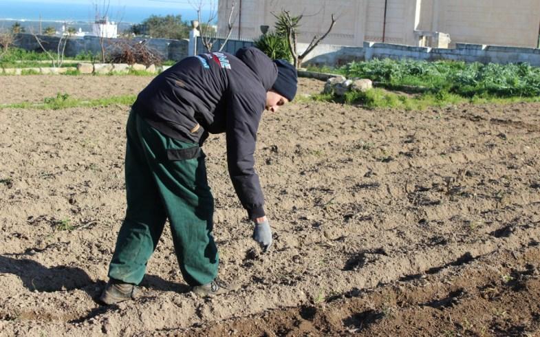 Seminando Biodiversità, semina di 80 varietà antiche di cereali e legumi