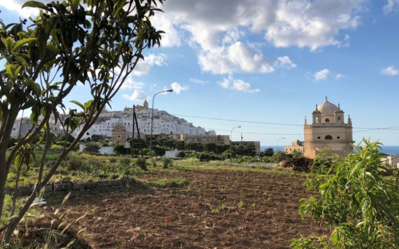 OSTUNI E SOLEQUO SU CITTA' MERIDIANE TRAVEL DOG