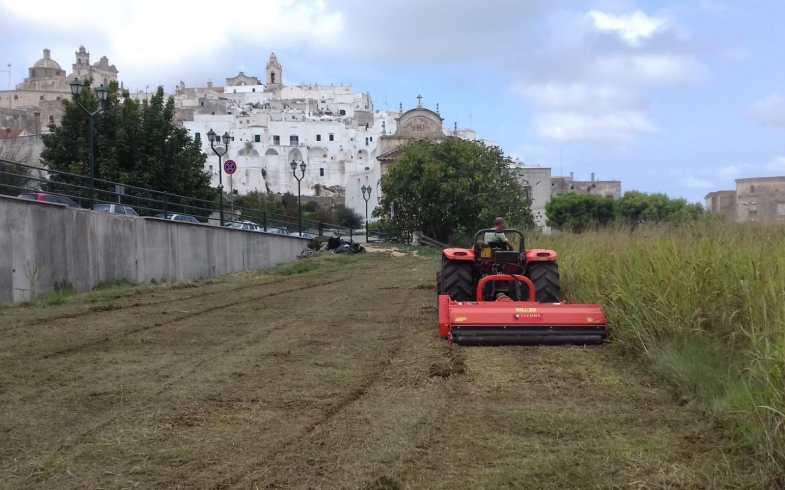 Orti storici, al patto di collaborazione subentra il contratto di fitto agrario [La Gazzetta del Mezzogiorno]