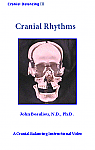 Cranial Therapy