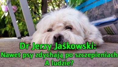 Dr Jerzy Jaśkowski: Nawet psy zdychają po szczepieniach