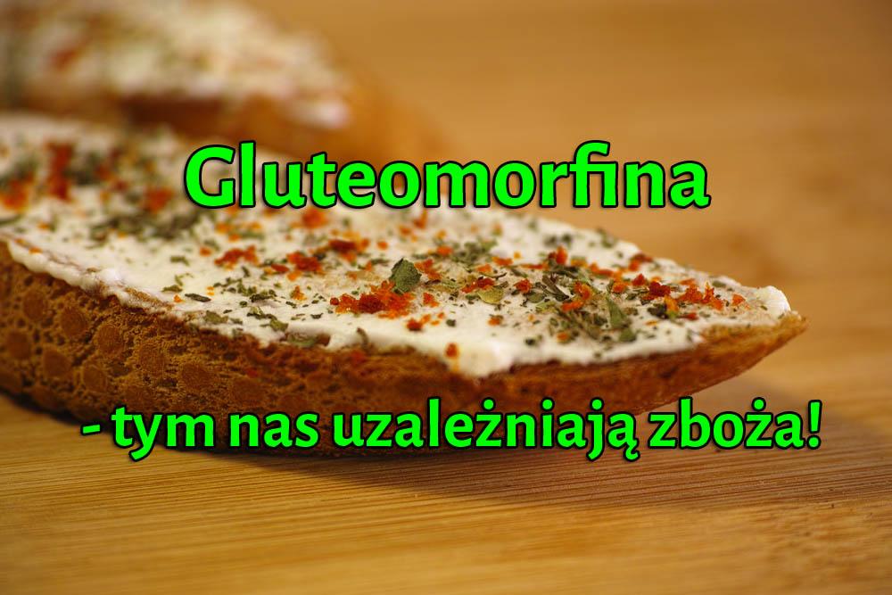 Gluteomorfina - tym nas uzależniają zboża!