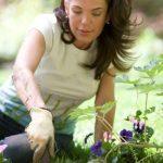 Gardeners and Masternaturalists