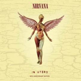 Nirvana In Utero 30