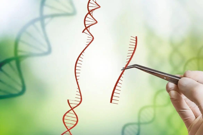 Biotech Research Associate