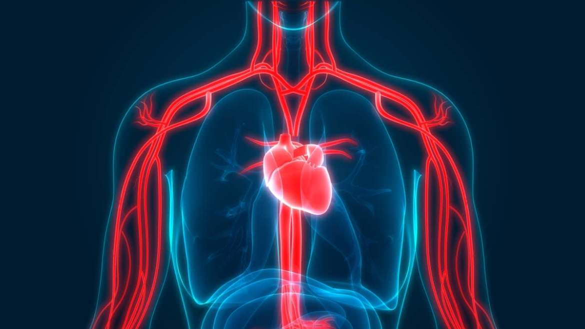 A diabetes drug can prevent cardiovascular and kidney