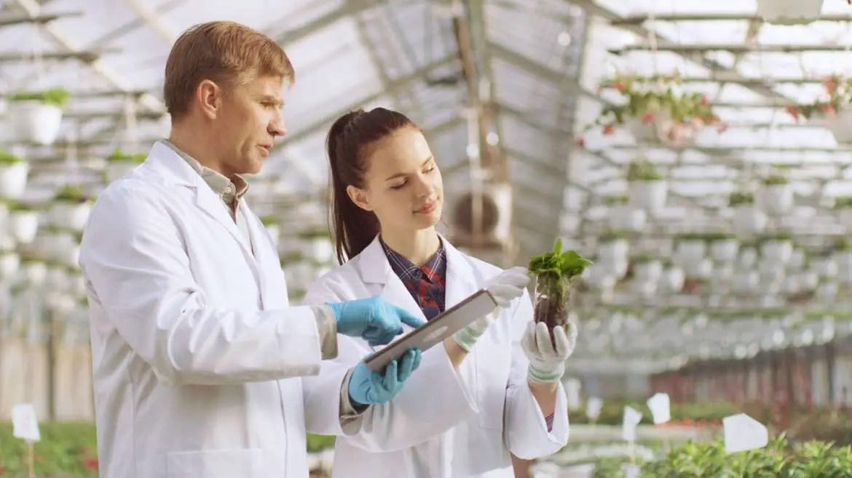 ICAR-IISR Biotechnology Recruitments 2020