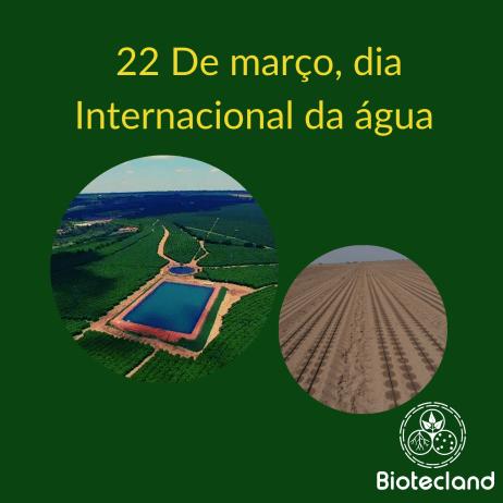 22 de Março, Dia Internacional da água