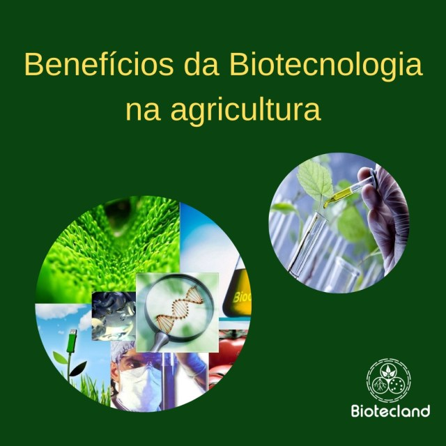 Benefícios da Biotecnologia na agricultura
