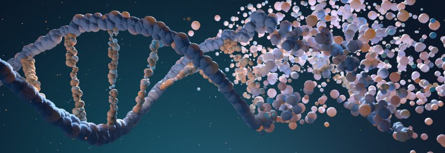 DNA strand assembling from different elements. 3D illustration