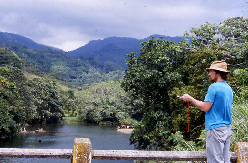 The lead author taking vanishing bearings of migrating butterflies at Rio Guanche on the Atlantic coast of Panama.