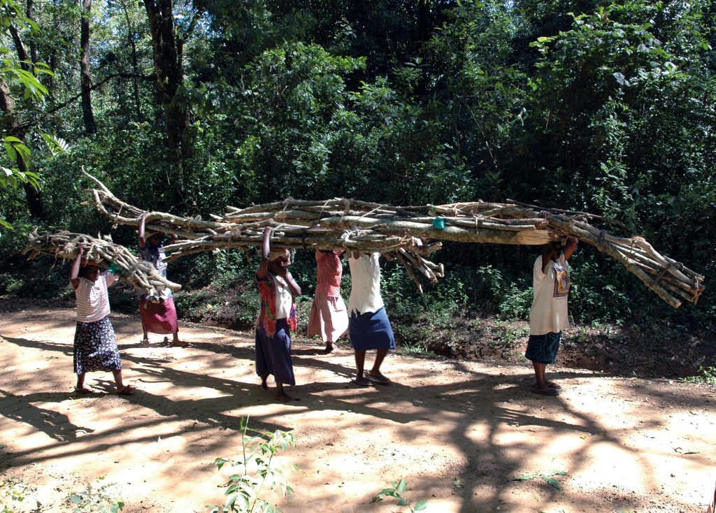 Utilizing the forest and its resources: the example of women carrying fuel wood collected in Kakamega Forest, Photo by Nick Mitchell