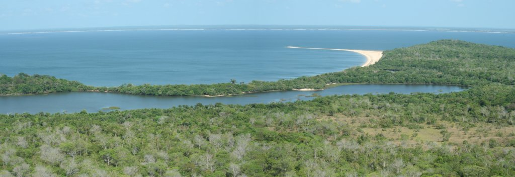 Panoramic view of savannas and forests near to our study site. (Photo credit: Edson Varga Lopes).